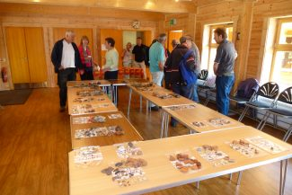 Finds set out on the day in St Michael's Community Room for public viewing | Photo by Malcolm Brown