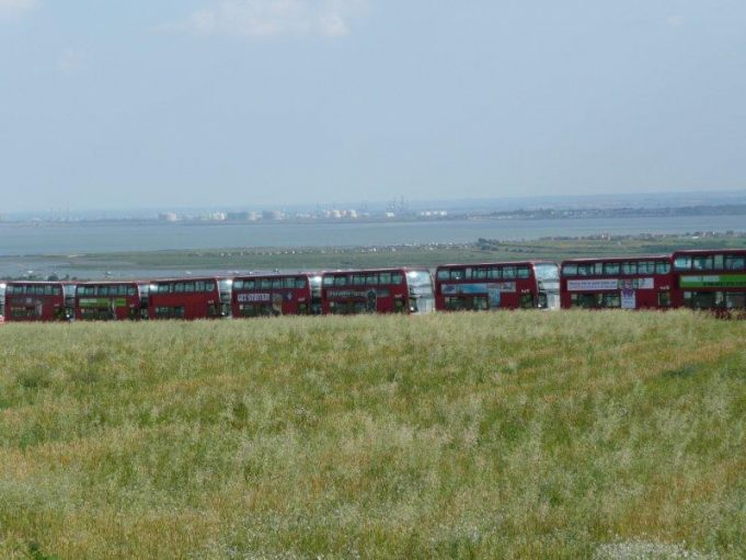 Red Buses on Hadleigh Downs | Annie Blackery