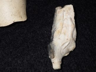 Clay Pipe With Fox (Missing Head) and Grapes Made in London 1800-1830 | AGES AHA