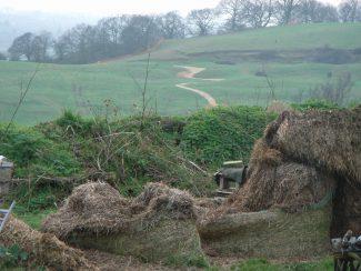 Hay Trail | D Turner