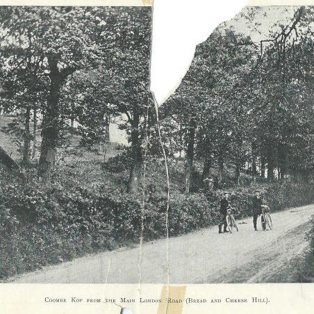 Combe Wood Estate Brochure