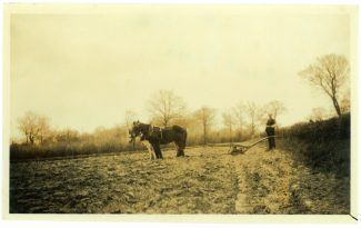 Lone ploughman at Daws Heath ca 1925 when the hamlet was still entirely rural.