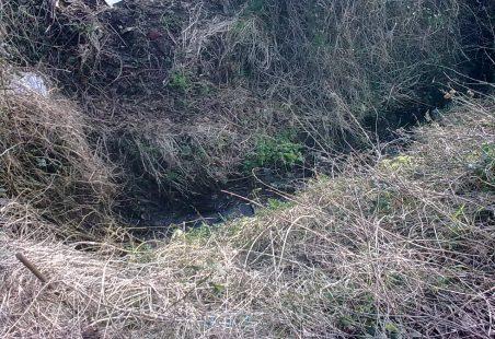 Hadleigh Ditches