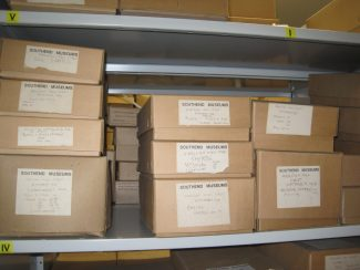 Finds stored in boxes   Lynda Manning