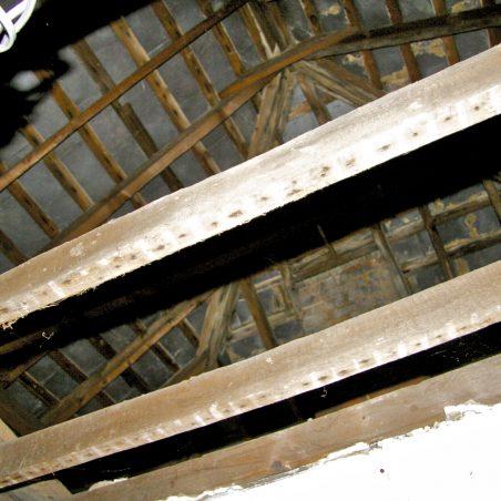A further views of the beams, May 2016.   Graham Cook