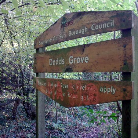 Eastern end of Dodds Grove | NT