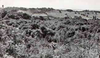 From Thundersley Glen looking east | Collection of Bob Delderfield