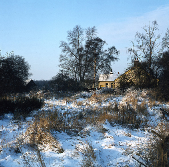 Another Thundersley image from that winter. Can anyone tell me where it is or was? | © Robert Hallmann