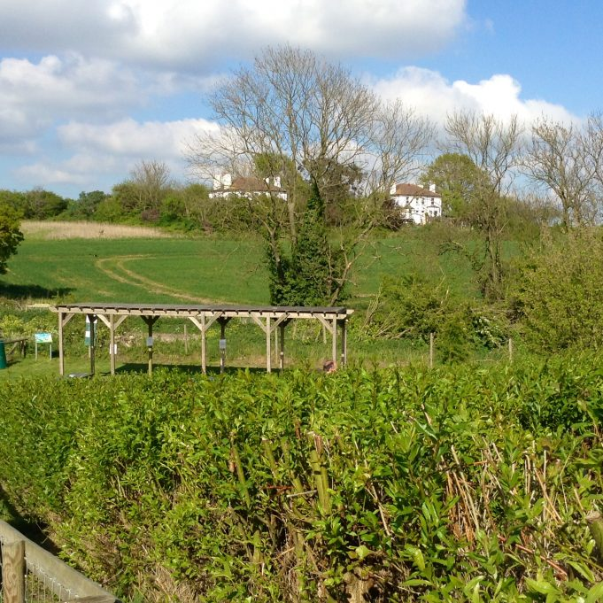 Easter Saturday at the Hadleigh Farm | Susan Wells