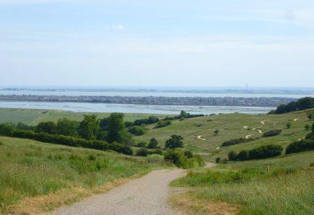 Hadleigh Park's Olympic Legacy
