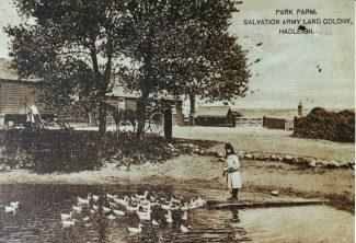 Park Farm pond
