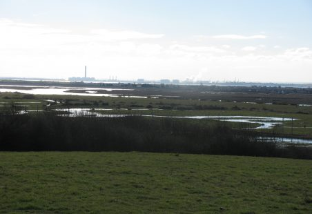 Hadleigh Marshes in flood