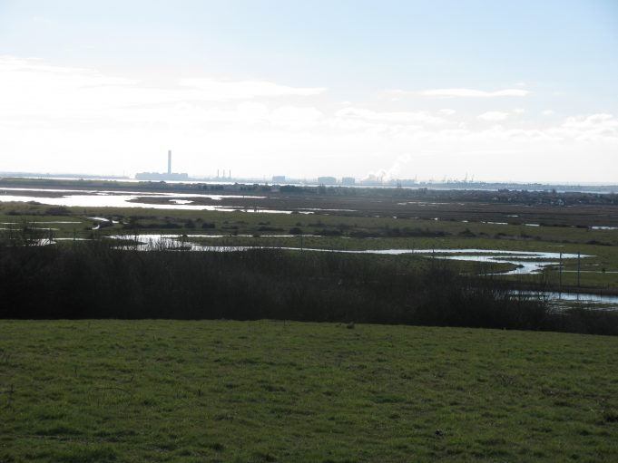 Old water course leading to marsh indent to the west of the location of Pyenetts Dock. Indent and dock area are located 'beneath' the Grain Power Station. Picture taken from the rise on way to Chapel Lane park access. | Nick Ardley