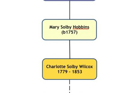 Origins of the Solbys