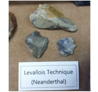 Levallois Technique Flints (Neanderthal)
