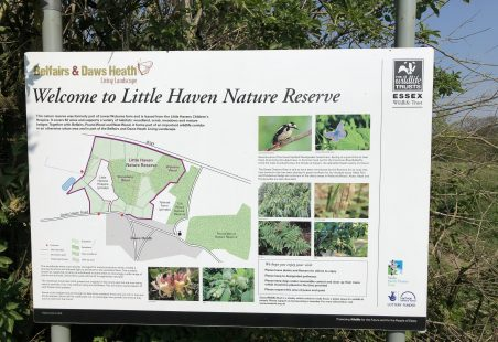 Little Haven Nature Reserve and Tile Wood