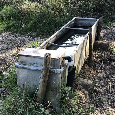 Water trough for the cattle. | Graham Cook
