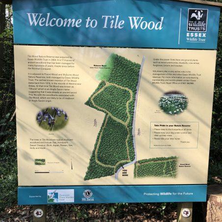 Tile Wood information board. | Graham Cook