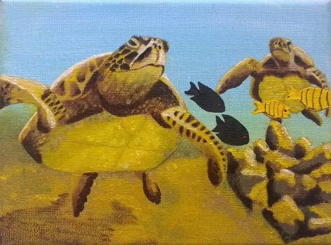 Turtles by Christina