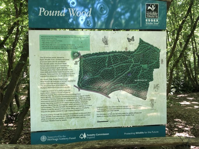 Useful signage for Pound Wood. | Graham Cook