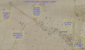 A section of the Hadleigh 1847 Tithe Map | ERO, H&TCA